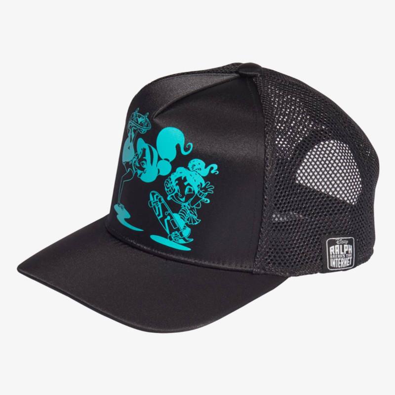 DISN PRIN CAP