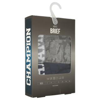 CAMO BRIEFS 2/1